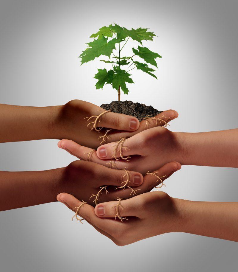 VITAL Coaching für Unternehmen und Organisationen